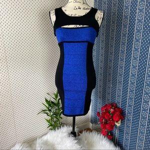 2B Bebe Bodycon Asymmetrical Knit Dress